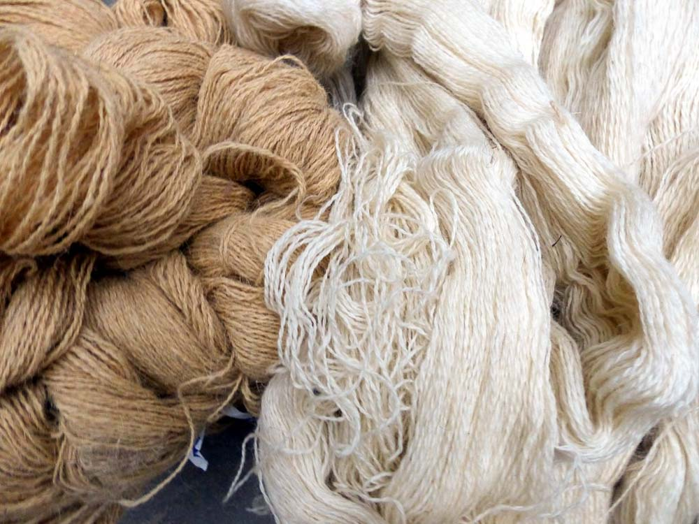 Regular market quality wool on the left with Bunyaad selected wool on the right