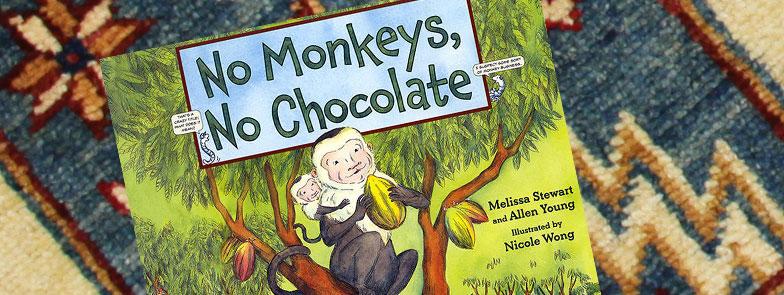 Storybook No Monekys, No Chocolate