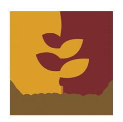 Logo Bunyaad