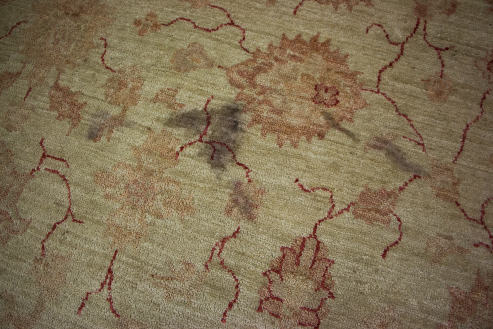 Rug with stains