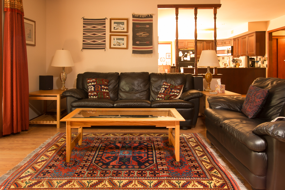 rugs-living-room-38
