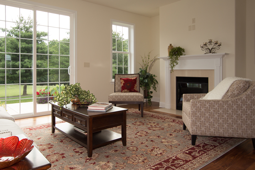 rugs-living-room-45
