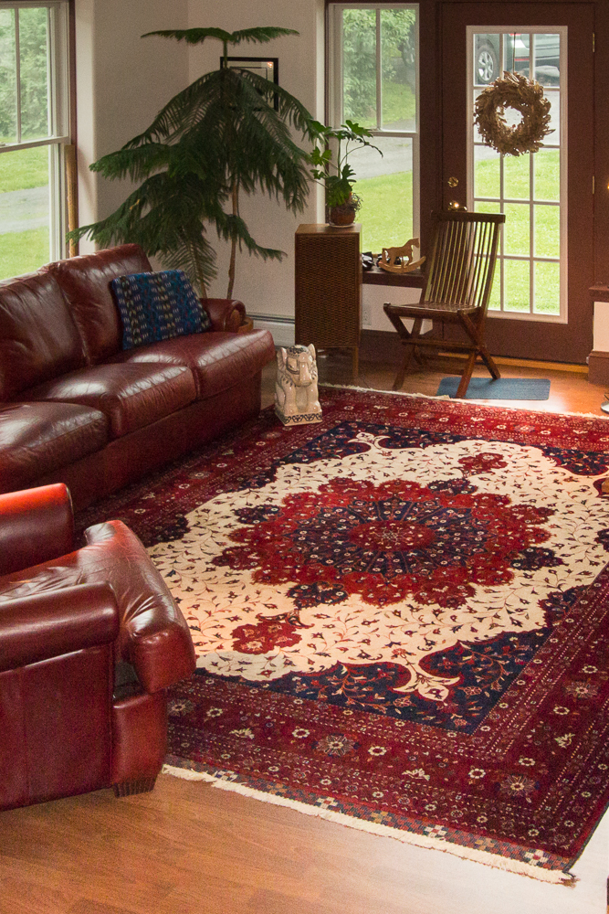 rugs-living-room-46