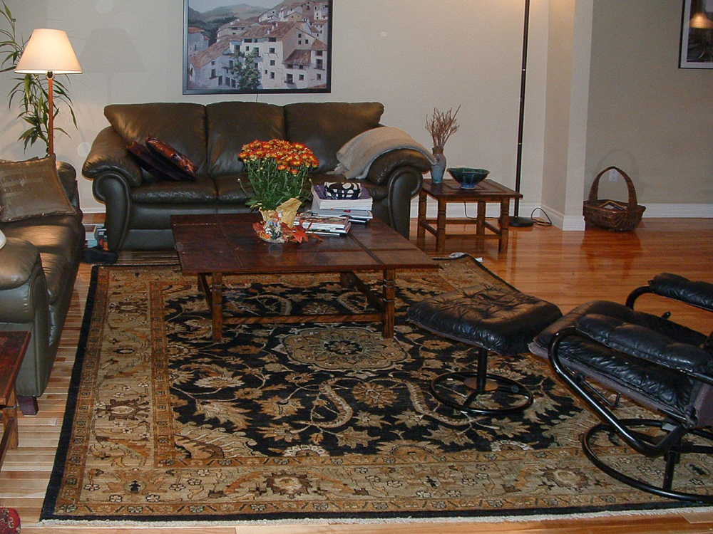 rugs-living-room-58