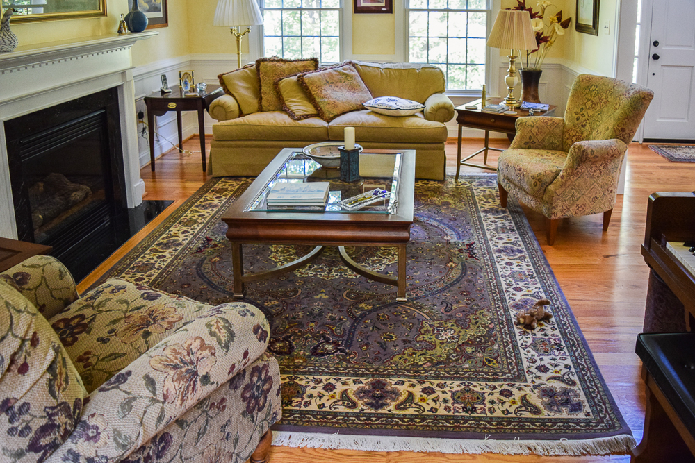 rugs-living-room-91