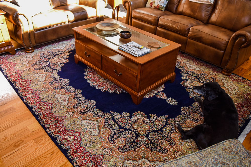 rugs-living-room-93